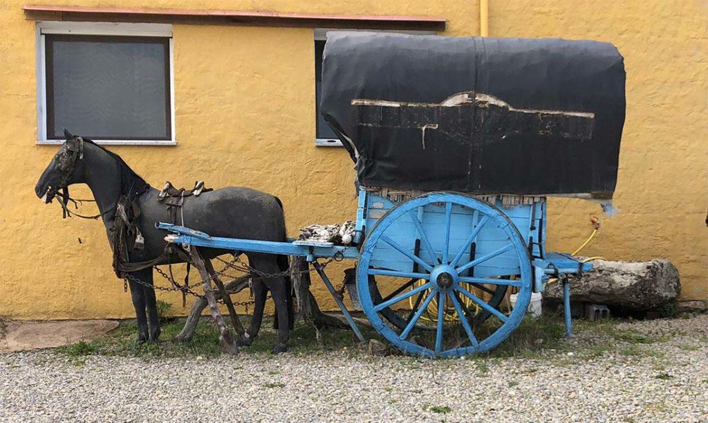 Carretto dei torronai nomadi di Tonara